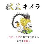 城ドラ キメラ レベル30 動画
