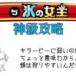 城ドラ 氷の女王 神級