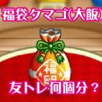 城ドラ 福袋タマゴ(大飯)